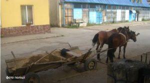 Трагедія в селі Ілів – у ставку потонув 70-річний чоловік